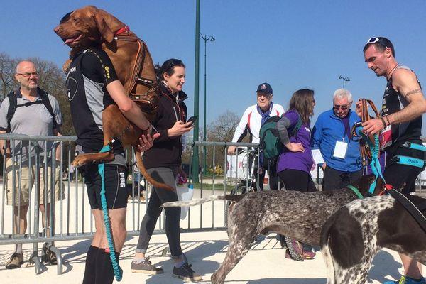 Le champion du monde de canicross, Anthony Le Moigne (à droite), est logiquement arrivé premier.