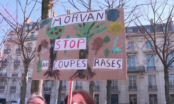 Le Morvan, debout contre les coupes claires