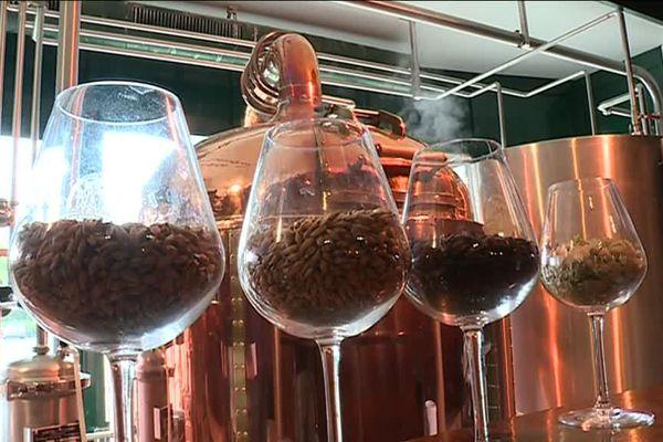 Selon la torréfaction de l'orge, on obtient une bière plus ou moins ambrée.