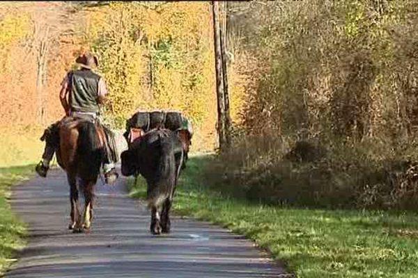 Jacques Arthuys et ses deux chevaux en direction de la COP 21