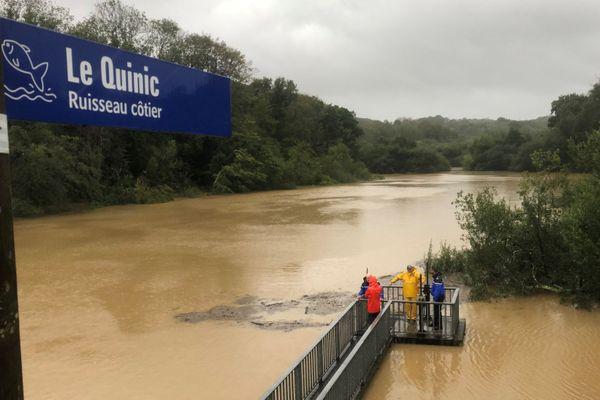 Le débit du Quinic à Paimpol est exceptionnellement fort