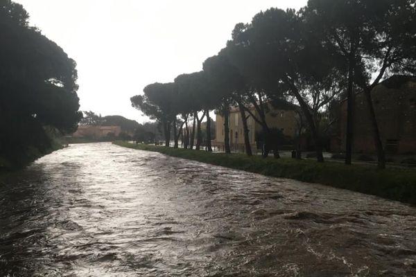 La Massane, à Argelès-sur-Mer, a atteint sa cote d'alerte ce mercredi 22 janvier au matin.