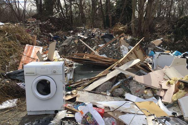 Le maire de Bellerive-sur-Allier veut appliquer le principe du pollueur-payeur aux personnes qui déversent leurs détritus sur les bords de l'Allier.