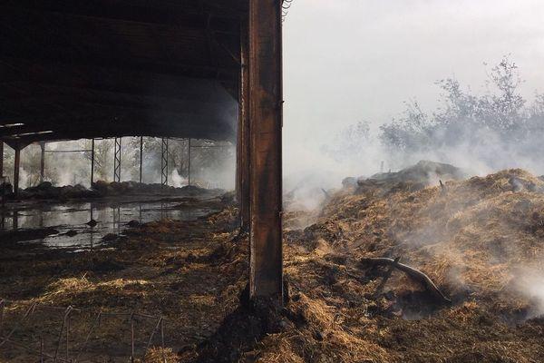 Dans la ferme de Parnans (Drôme), un tiers du troupeau de vaches a péri dans l'incendie, soit 23 génisses.