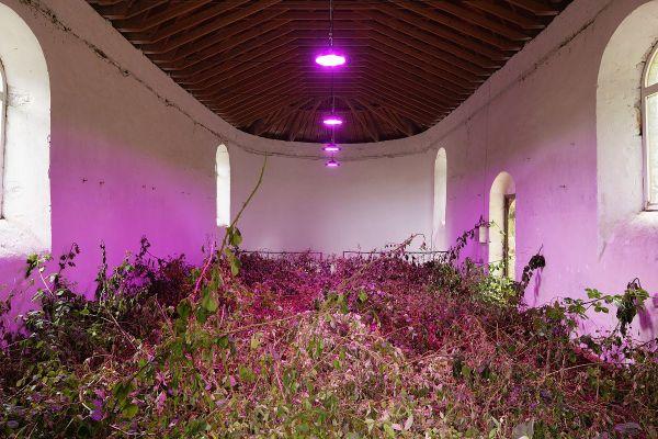 """""""La chapelle de ronces"""":  une oeuvre de l'artiste Erik Samakh."""