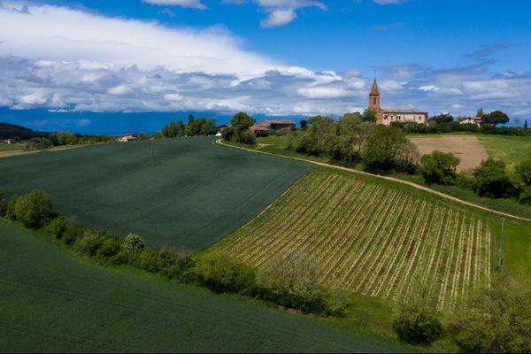 Le guide Vert, le guide des meilleurs vins de France 2020,  décerne une étoile au Domaine Plaisance Penavayre à Fronton