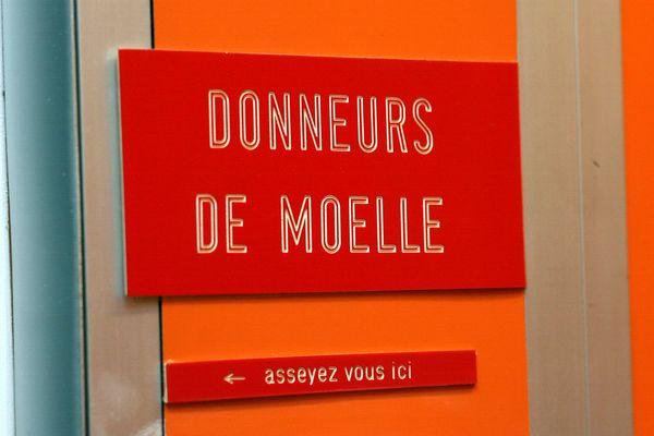 Le registre français des donneurs de moelle osseuse comprend 258.000 profils.