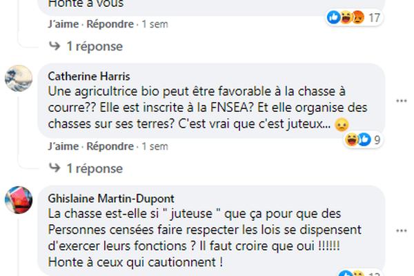 Capture d'écran de la page Facebook de la commune de Laillé