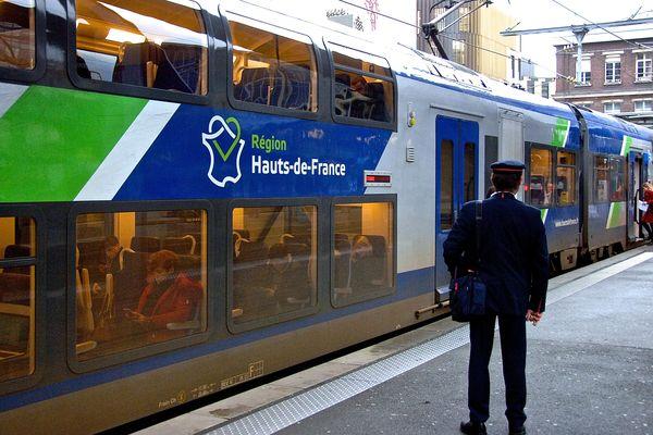 Moins d'un TER sur deux pourrait circuler dans le Nord Pas-de-Calais lundi 22 mars.
