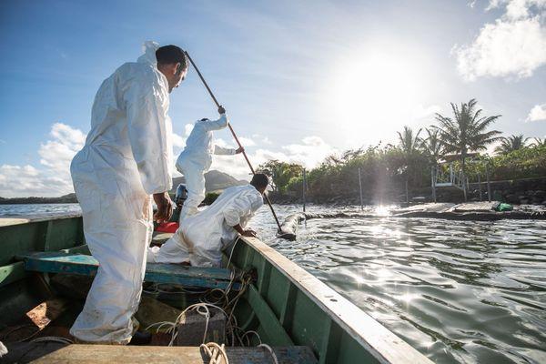 Ces pêcheurs mauriciens placent des boudins de protection faits à la main pour protéger leur île des hydrocarbures