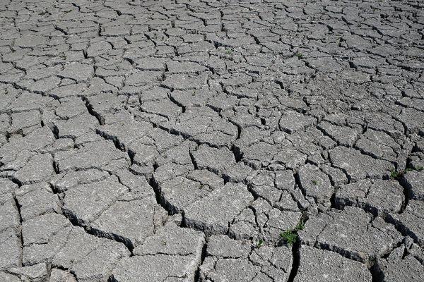 La préfecture de Haute-Loire a pris de nouvelles dispositions, mardi 17 septembre, face à l'absence quasi-totale de précipitations. Certains points d'eau sont en situation de crise comme les bassins de l'Allier moyenne, l'Alagnon et la Dorette.