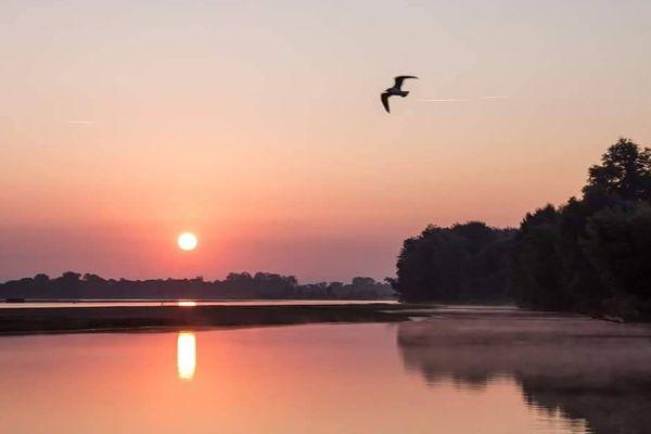 Lever du soleil sur la Loire à St-mathurin-sur-loire (49)