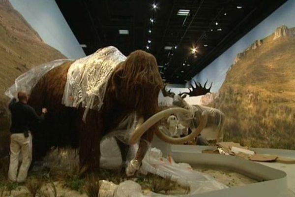 Réplique du mammouth de la grotte Chauvet