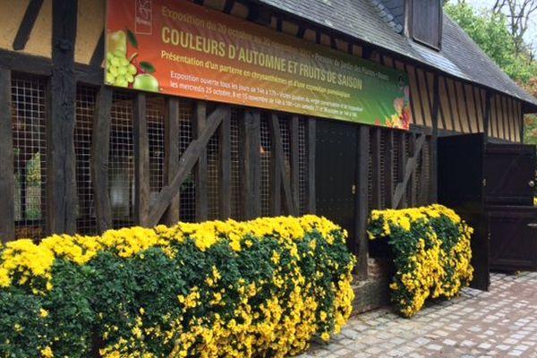 """Exposition """"Couleurs d'automne et fruits de saison"""" au jardin des plantes de Rouen"""