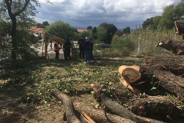 Les résidents du quartier de l'université à Perpignan s'opposent à l'abattage de chênes centenaires - mercredi 21 avril 2021.