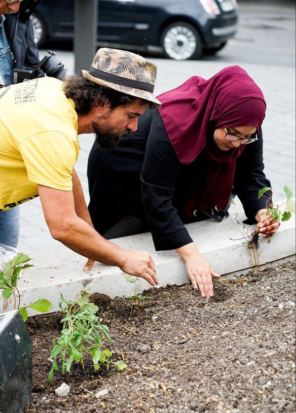 L'action a particulièrement bien fonctionné place d'Erlon, où une passante a planté elle-même un fraisier sur la fontaine Subé ce mercredi 17 juin