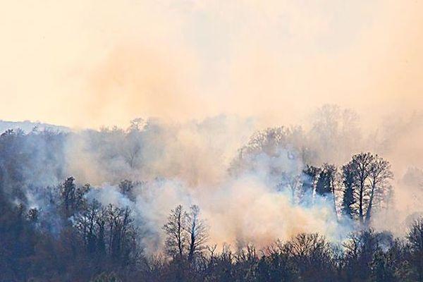 Les incendies, comme celui-ci près du village de Carcheto-Brustico il y a quelques mois, font chaque année des ravages en Corse