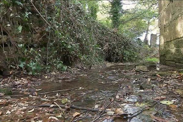 La rivière est fortement impactée par la sécheresse