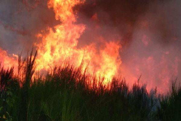 L'incendie à Saint-Sylvestre n'est toujours pas maîtrisé. Des renforts de Creuse et de Corrèze ont été envoyés sur place pour soutenir les pompiers de la Haute-Vienne.