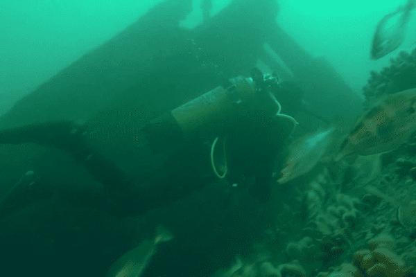 Plongée en eaux bretonnes pour découvrir les épaves, parfois bien cachées