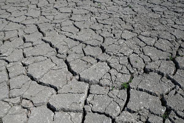 A la suite de la sécheresse de 2018, le préfecture de la Marne a reconnu l'état de catastrophe naturelle pour 20 communes le 9 août 2019