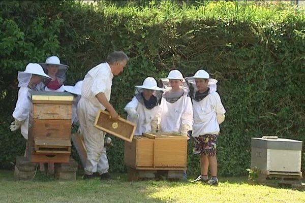 L'apiculteur Noël Mallet, le président du conservatoire de l'abeille noire en Combrailles, chapeaute un projet pédagogique avec des écoliers. Il leur fait découvrir son métier et cette variété d'abeille méconnue.