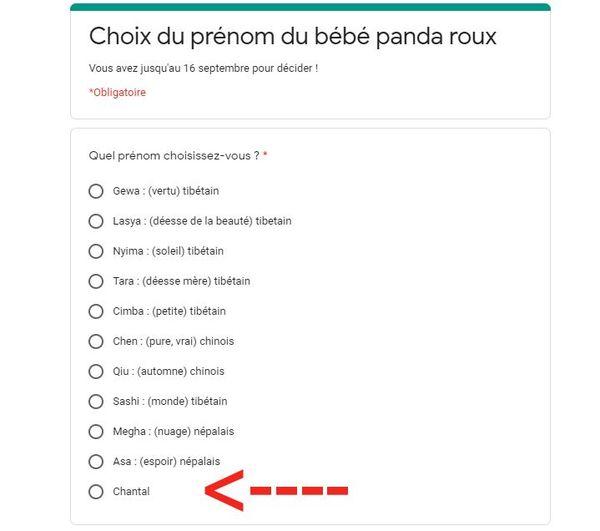 Capture d'écran du site du département de Seine-Maritime où le prénom Chantal a été rajouté