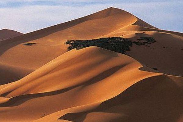 """Sahara-Desert"""