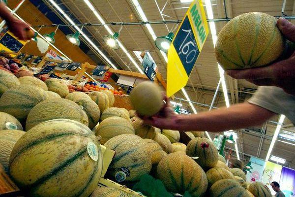 Un consommateur en train de choisir son melon.