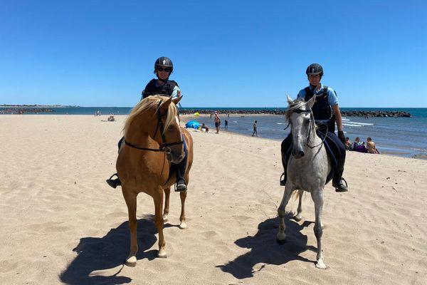 Les gendarmes Florence Vignier et Marine Waegaert feront équipe avec Django et Cali pendant tout l'été.