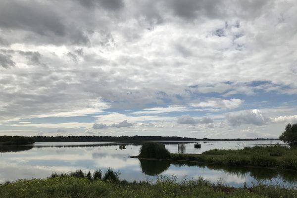 Lac de Grand-Lieu (44)