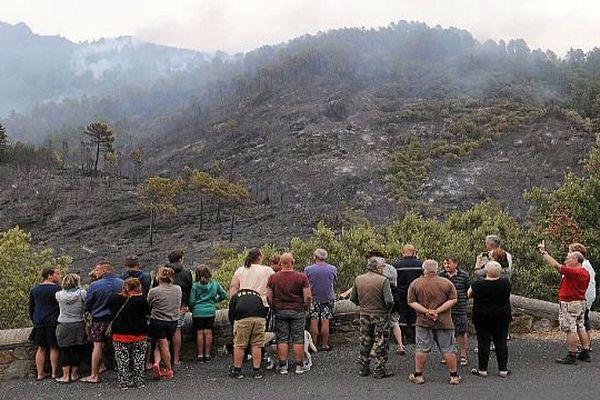 Saint-André-de-Valborgne (Gard) - l'incendie a ravagé 110 hectares de pinède, de châtaigniers et de garrigues - 30 juillet 2015.