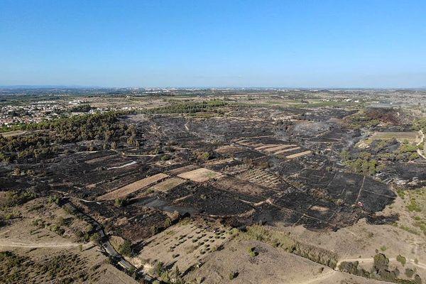 A Nissan-lez-Enserune dans l'Hérault, le feu a détruit 60 hectares le18 août 2021.