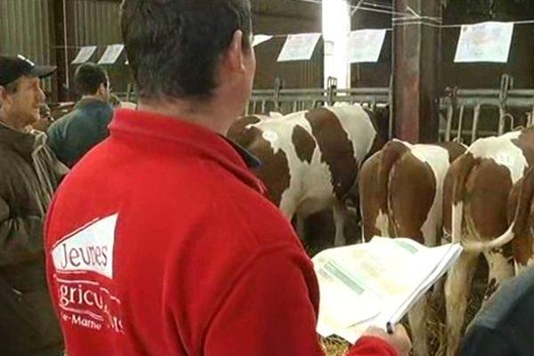 """La vente a eu lieu selon le principe de la """"vente à la bouteille"""" : les clients intéressés glissent leur enchère dans une bouteille devant la vache"""
