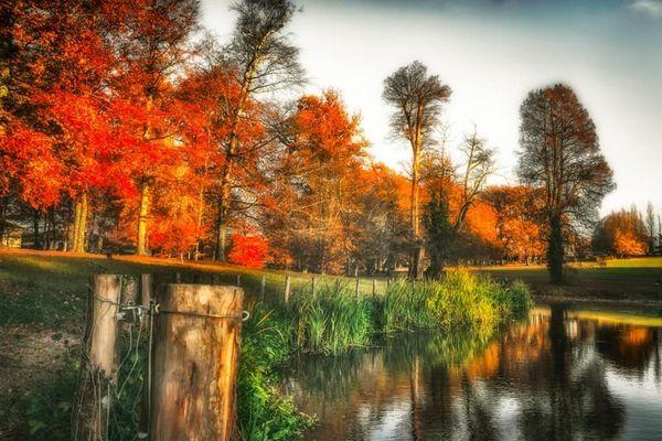 Merveilleuses couleurs de l'automne