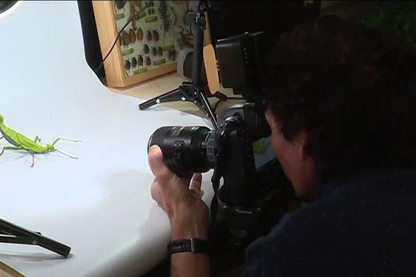 Didier Chardin dans son studio photo pour insectes