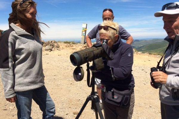 Les guides permettent aux touristes d'observer la faune grâce à une longue-vue.