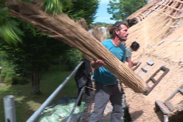 Chaumier, le métier recrute, comme ici à Saint-Lyphard dans le Parc Régional de Brière près de Saint-Nazaire