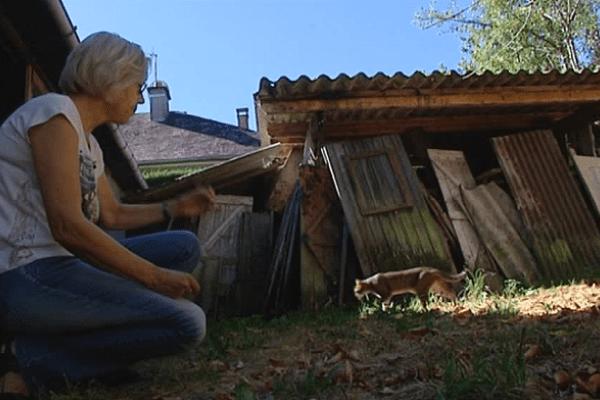 F3 Limousin - Ghislaine Dubost face à un des chats empoisonnés de Bort-les-Orgues