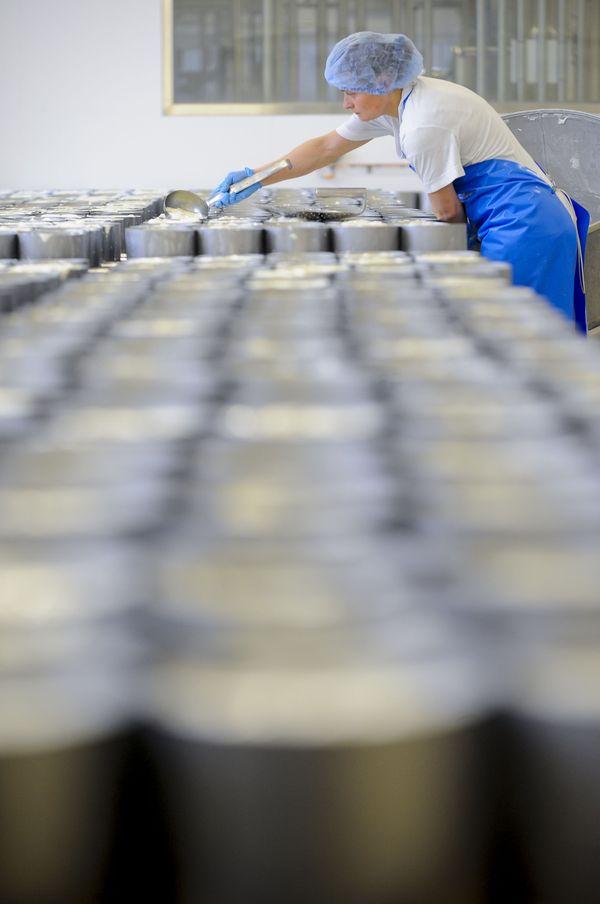 La fabrication du brie de Meaux, dans une fromagerie à Cousance-les-Triconville (image d'illustration)