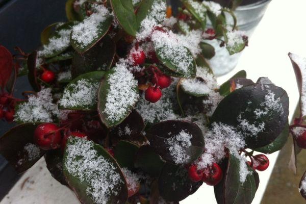 En 2012, la Haute-Normandie a connu plusieurs épisodes neigeux.