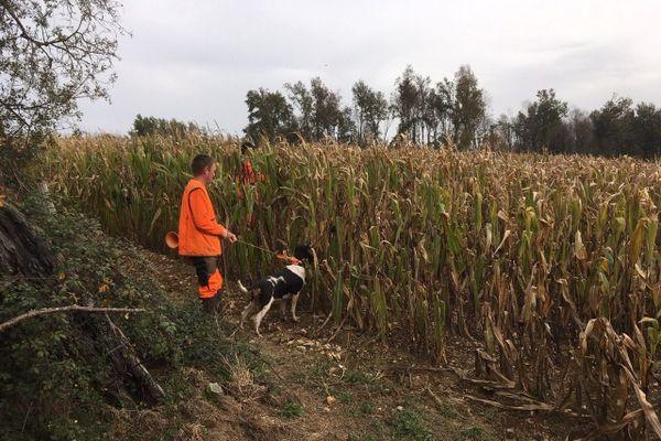 Un chasseur sur une parcelle agricole dans le Périgord