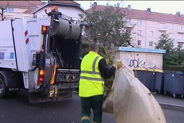 Le ramassage des sapins en ville