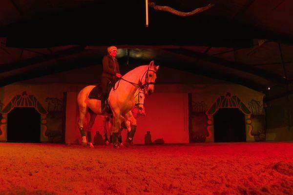 Le rideau du Zagal Cabaret reste fermé en raison de la crise sanitaire mais les entraînements de chevaux sont maintenus.