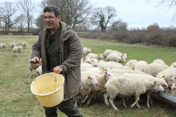 Jean-Luc Braud, éleveur de l'Indre, nourrit ses moutons.
