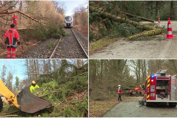 La tempête Ciara a provoqué des dégâts matériels et perturbé les axes routiers, ferroviaires et le réseau d'électricité le 10 février en Alsace