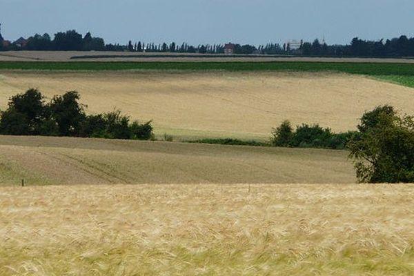 Dans le Nord Pas-de-Calais, 87% des terres sont louées sous le mode du fermage.