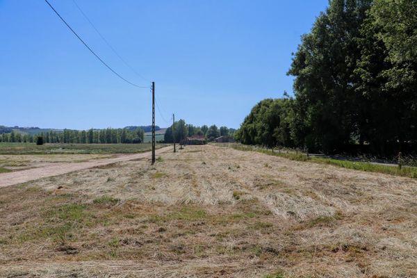 De part et d'autre, les anciens taxiways de l'aérodrome allemand d'Audembert. Les hangars des avions se trouvaient à droite, sous les arbres.