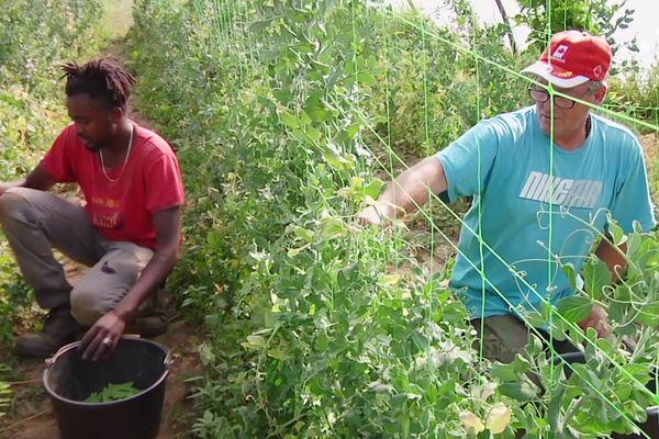 Ludovic (à droite), avec un autre salarié.