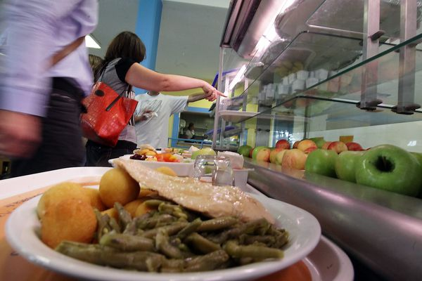 Les cantines scolaires s'organisent pour éviter le gaspillage alimentaire